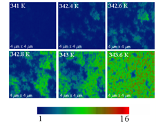igure 1: 4 x 4 mm size images of the near-field scattering amplitude obtained by scattering scanning near-field infrared microscope (s-SNIM) operating at the infrared frequency w = 930 cm-1.